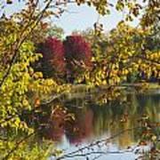 Lake Winona Autumn 15 Art Print