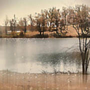 Lakes Edge Art Print