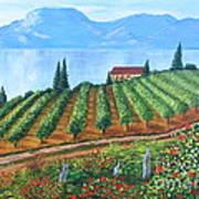 Lakeside Vineyard Art Print