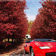 Lamborghini Maple Lane Big House Art Print