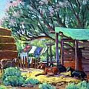 Lamb's Barn Art Print