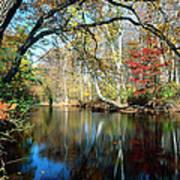 Lamington River At Tewksbury  Art Print