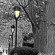 Lamp Lite Art Print