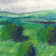 Land 1 Art Print