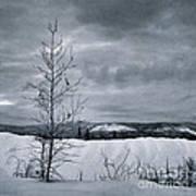 Land Shapes 15 Print by Priska Wettstein