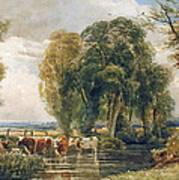 Landscape Cattle In A Stream With Sluice Gate Art Print