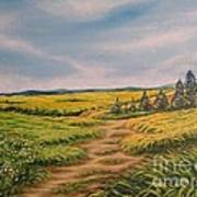 Landscape Field Grass Trees And Road  Art Print by Drinka Mercep