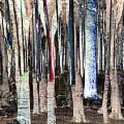 Landscape Forest Trees Art Print