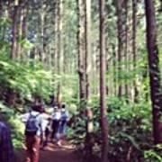 #landscape Mt.takao Art Print