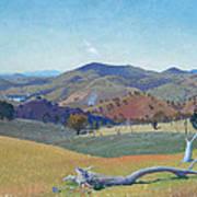 Landscape Near Yass Art Print