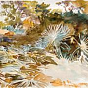 Landscape With Palmettos Art Print