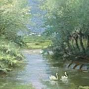 Landscape With Swans Art Print