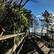 Langmoor-lister Bridge Art Print