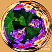 Lantana Orb Art Print