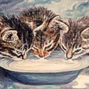 Lap Of Luxury Kittens Art Print