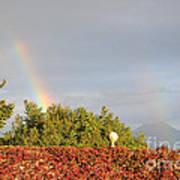 L'arcobaleno Art Print