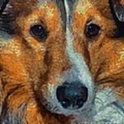 Lassie - Rough Collie Art Print