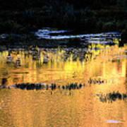 Last Light Near Telluride Art Print