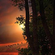 Late August Sunset Art Print