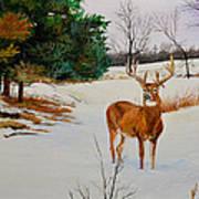 Late Season -droopy Ear Art Print