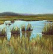 Late Sun On The Marsh Art Print