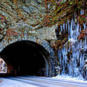 Laurel Creek Road Tunnel Art Print