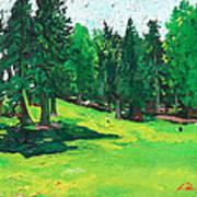 Laurelhurst Park Art Print