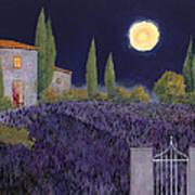 Lavanda Di Notte Art Print by Guido Borelli