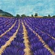 Lavender Afternoon Art Print