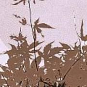 Lavender And Taupe Haiku Art Print