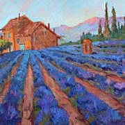 Lavender Field Provence Art Print