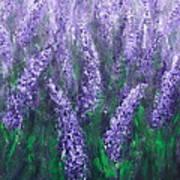 Lavender Garden II Art Print