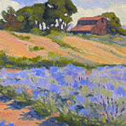 Lavender Hollow Farm Art Print