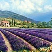 Lavender Art Print by Michael Swanson