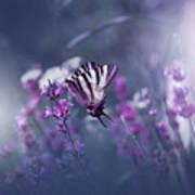 Lavender Queen... Art Print