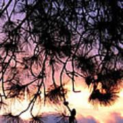Lavender Sunset Painting Art Print