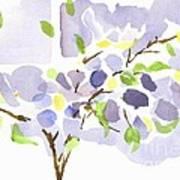 Lavender With Missouri Dogwood In The Window Art Print