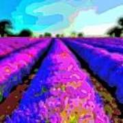 Layer Landscape Art Lavender Field Art Print