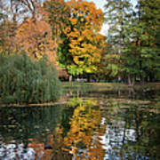 Lazienki Park Autumn Scenery In Warsaw Art Print