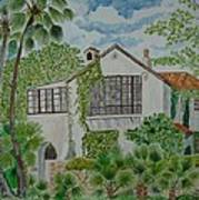 L.b. Clegg House In San Antonio Art Print