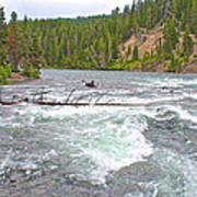 Le Hardy Rapids In Yellowstone River In Yellowstone National Park-wyoming   Art Print