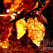 Leaf And Light Abstract Art Print by Natalie Kinnear