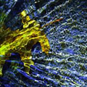 Leaf In Creek - Blue Abstract Art Print