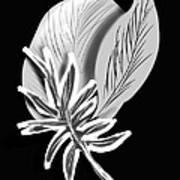 Leaf Ray Art Print