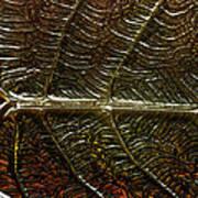 Leafage Art Print