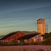 Leaning Silo  Art Print by Bill Gallagher