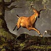 Leaping Stag Art Print