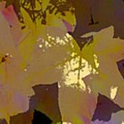 Leaves 9 Art Print