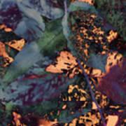 Leaves Abstraction IIi Art Print