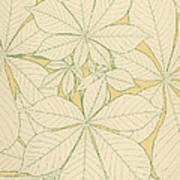 Leaves From Nature Art Print